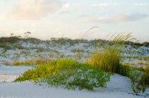 BeachNature010